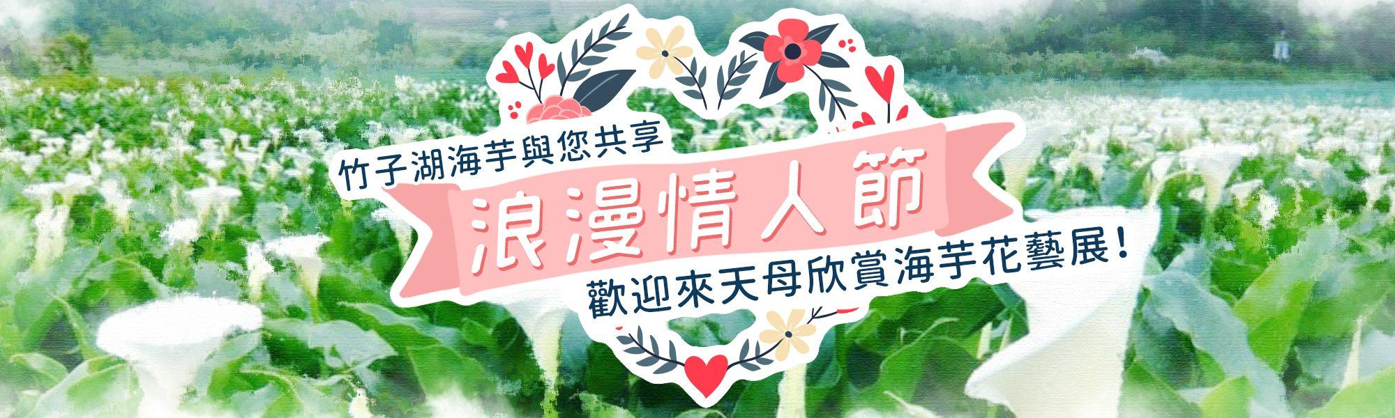 竹子湖海芋與您共享浪漫情人節 歡迎來天母欣賞海芋花藝展!