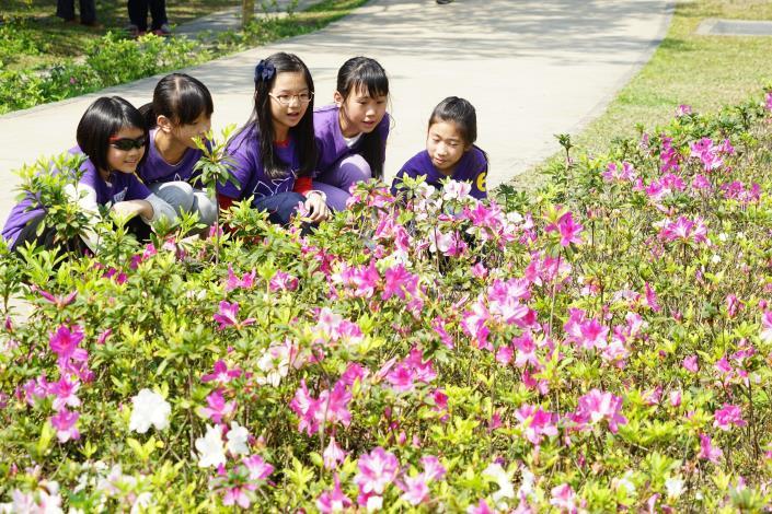 植樹節以花代樹  副市長與學子種下美麗城市的夢想