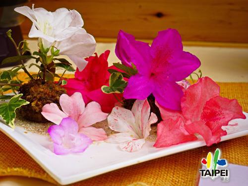 07杜鵑花