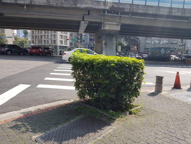 新生北路一段、喜瑞飯店前、紅磚道轉角、有株很茂盛的樹叢。因擋住車道上汽機車以及行人的視線,非常危險,己派員將它移除!