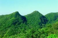 金面山脈係屬單面山地形