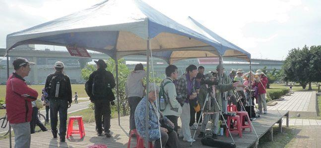 華江雁鴨自然公園,每年秋、冬時節候鳥南遷舉辦賞鳥活動