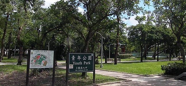 南萬華青年公園,綠樹遍佈