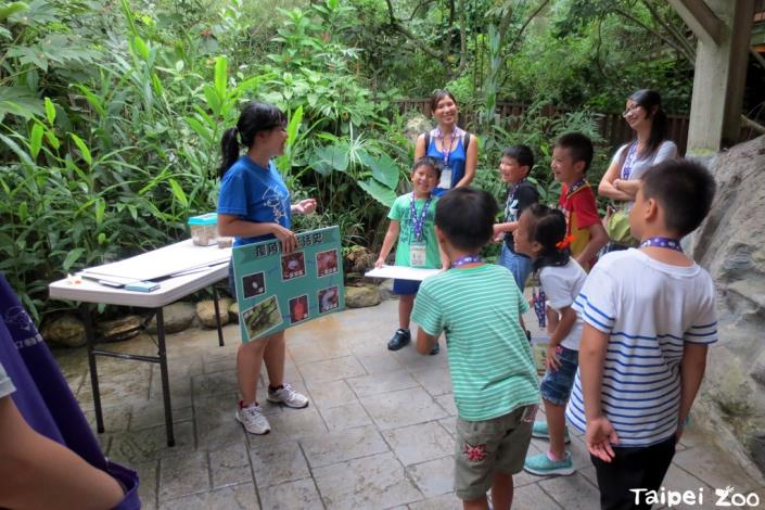 甲蟲體驗營帶你在動物園尋找甲蟲的神秘蹤跡[開啟新連結]