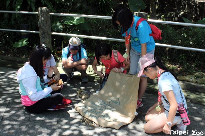 動物園科學家體驗營讓你親自動手為動物設計玩具[開啟新連結]