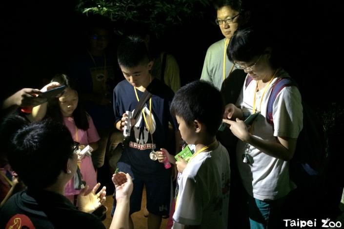 叢林探險營帶你探索夜間動物園的驚奇[開啟新連結]