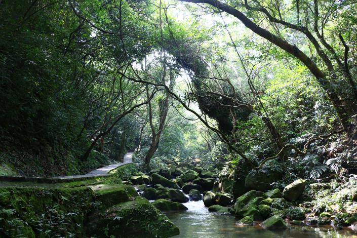 圓覺寺步道林蔭茂密溪水清澈