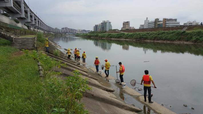 環保局協助岸際撈除作業
