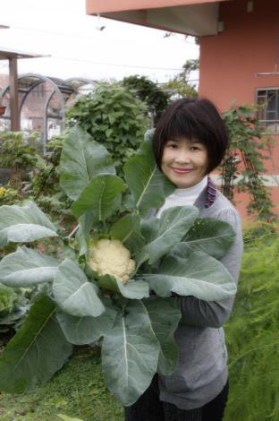 圖3.「居家蔬菜栽培技巧」課程(陸莉娟提供)