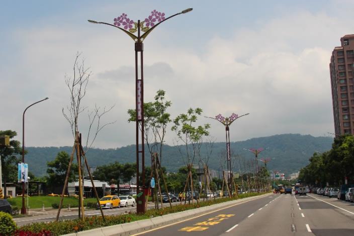 相片10-大業路櫻花路燈日間樣貌