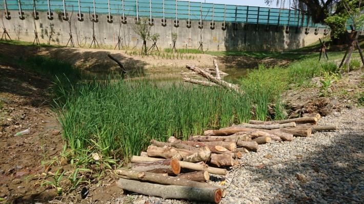 公園一景 – 枯木微棲地,公園內營造多數枯木微棲地,孔隙可供小動物棲息使用。