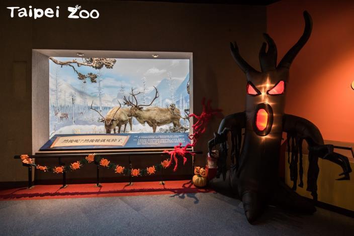 「勸世動物園」特展布置-2