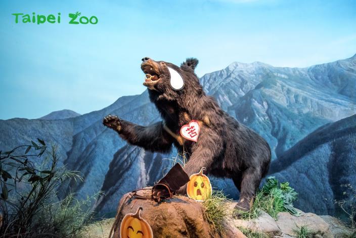 「勸世動物園」特展布置-4