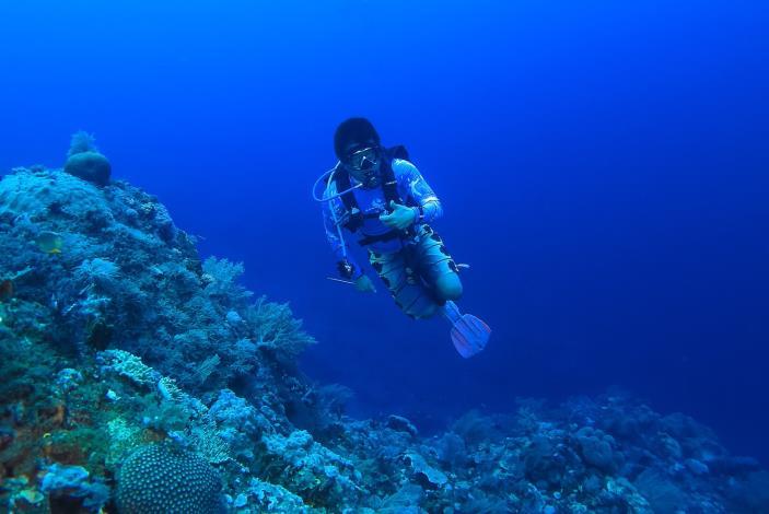 圖3. 澎湖海域海底潛水照一,海底探勘珊瑚的狀態。[另開新視窗]