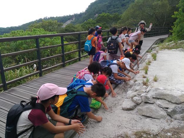 近距離觀察五指山地質情形