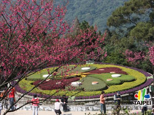 Yangmingshan Flower Festival