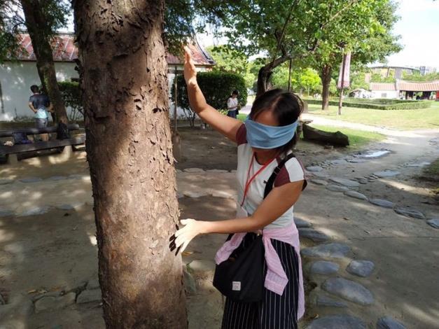 真實感觸樹木