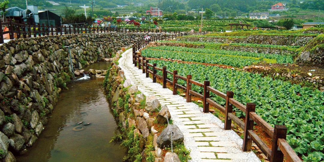 竹子湖流域溪溝整治工程