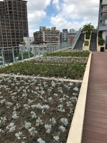 屋頂空中花園