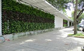 10806-2-施工圍籬安全走廊施作.JPG