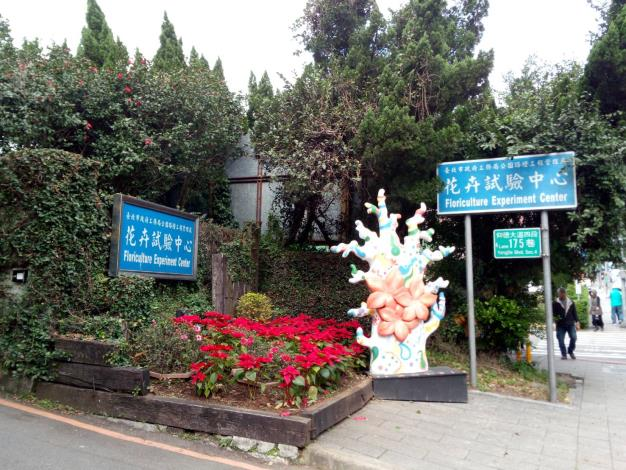 花卉中心大門口迎賓樹[另開新視窗]