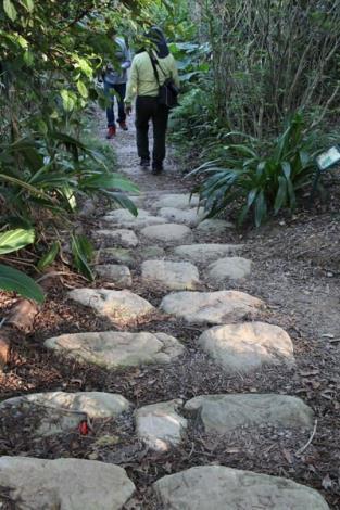 照片08.入環境的砂岩步道