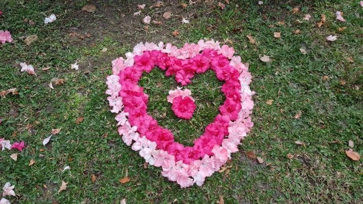 圖17.公園處同仁發揮巧思以凋落花瓣排列而成的杜鵑愛心圖