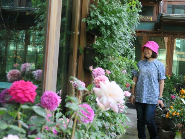 圖13、遊客於天使生活館旁欣賞玫瑰花。