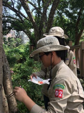 圖1.荒野親子北二團小鹿團員參與榮星花園公園生態活動一景