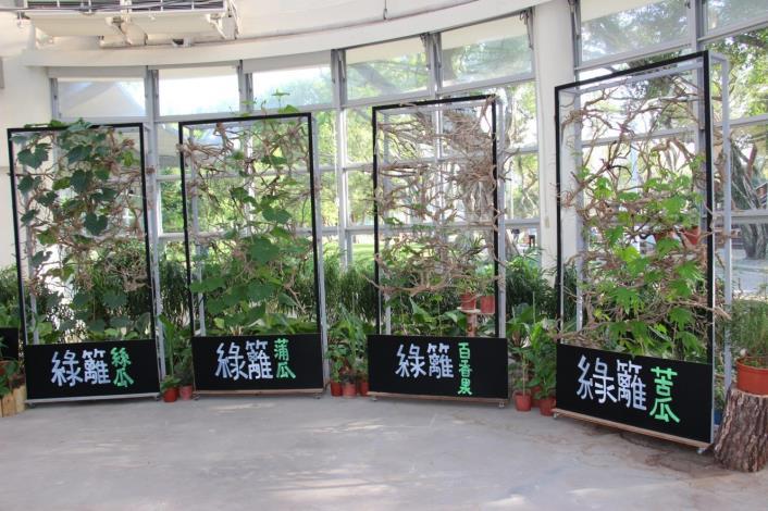 圖8.爬藤蔬果佈置而成的綠籬層架[開啟新連結]