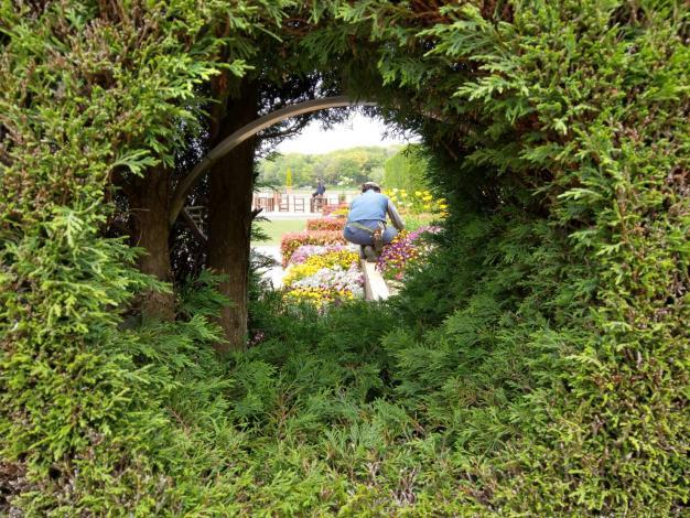 圖七、日本大泉綠地Sensory garden一隅。[另開新視窗]