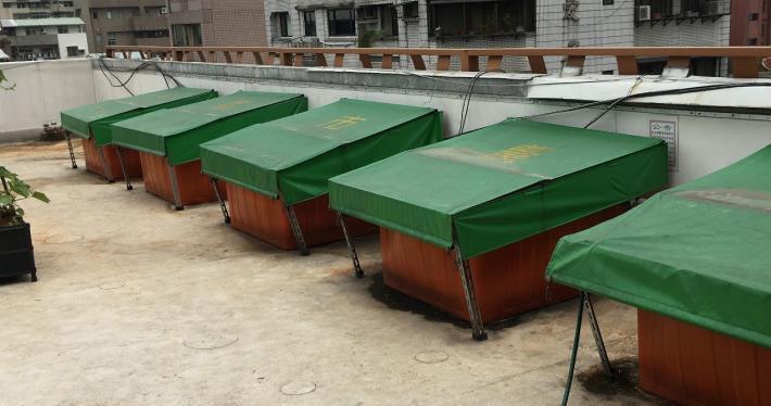 圖1. 本府田園城市綠屋頂雨水貯存槽加蓋隔絕蚊蟲[另開新視窗]