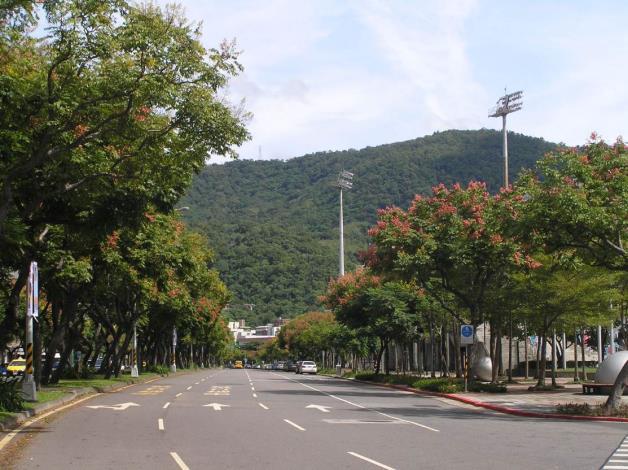 (圖8)青山綠樹與臺灣欒樹吸引眾多市民前往拍攝留下美麗的記錄[開啟新連結]