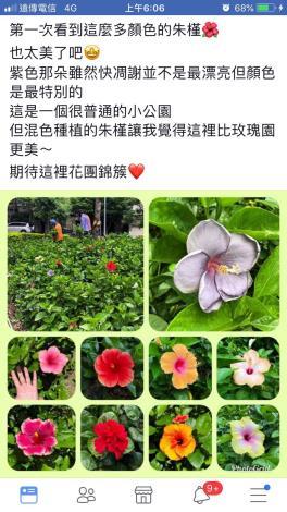 3. FB上有關麗湖綠地的貼文(網友Cubic Lin)[開啟新連結]