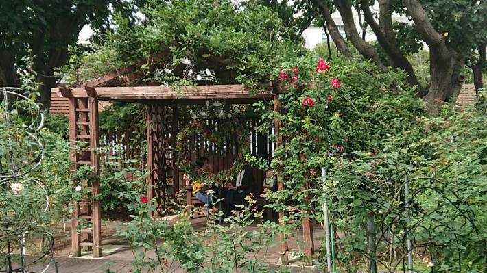 圖1、現代玫瑰園區的造型涼亭[開啟新連結]