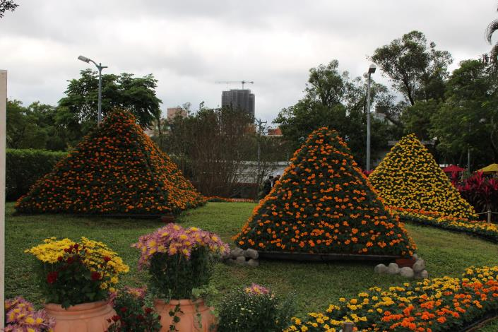 圖20金字塔傳奇呈現油菊花堆砌的金字塔.JPG