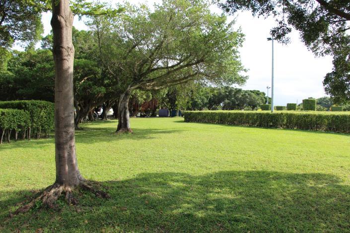 圖7、圖8皆為適合野餐的草地1.JPG