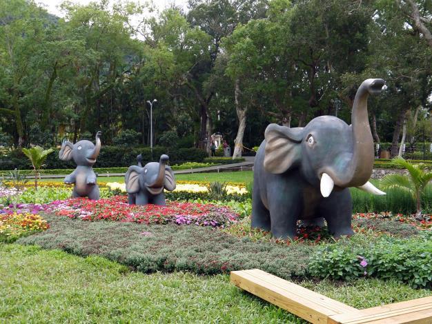 圖6.大象更帶著孩子們前來參加音樂盛會.JPG