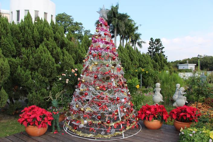 圖15、充滿聖誕節氣氛的聖誕樹及聖誕紅.JPG