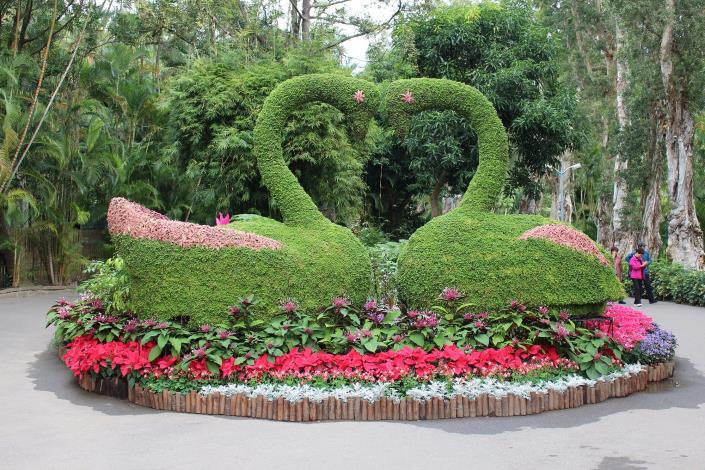 圖1.幸福天鵝綠雕搭配煙火花、聖誕紅、大飛燕草等花卉,讓您感受充滿喜氣洋洋的過年氣氛.JPG[開啟新連結]