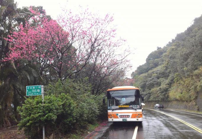 (圖9) 「大崙尾山站」是公車的終點,255和棕13公車都要在此迴轉下山[另開新視窗]