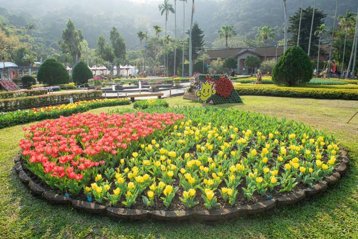 圖1. 於西式庭園首度展出來自日本的鬱金香