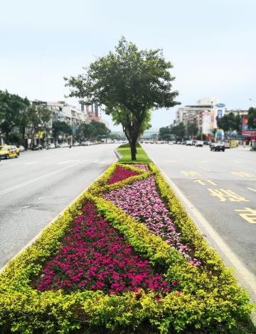 圖6.重慶北路道路綠美化現況