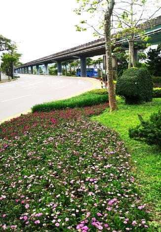 圖3.新光路道路綠美化現況