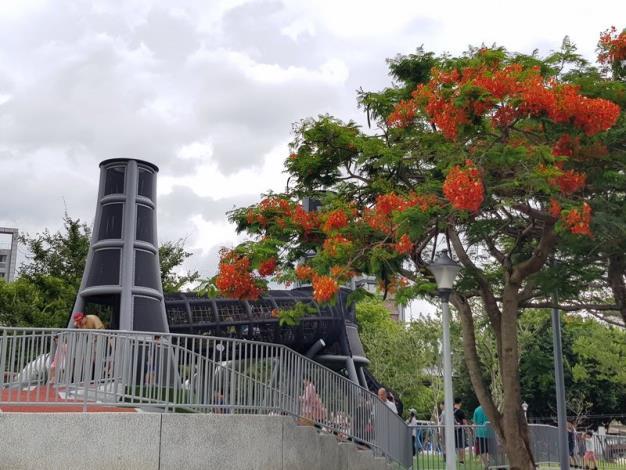 照片09. 煙囪遊戲塔平台上可以直接欣賞觸摸公園內鳳凰木盛開的花朵