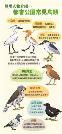 圖5. 認識都會公園常見鳥類。
