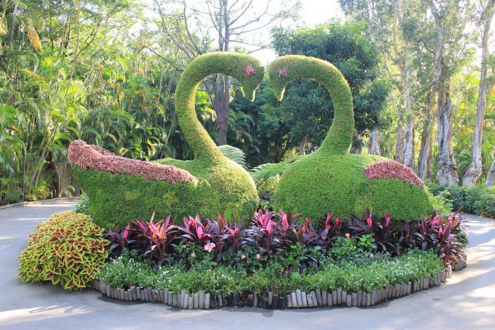 圖3.以愛心雙天鵝綠雕,呈現「天鵝之歌」的意境.JPG