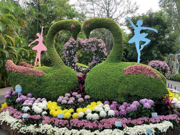 圖5.愛心造型菊與雙心天鵝帶領戀人們譜出「天鵝之歌」