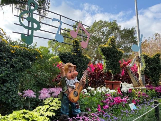 圖4.手持提琴的樂手搭配星星造型菊,演譯著「小星星變奏曲」的美妙樂曲世界