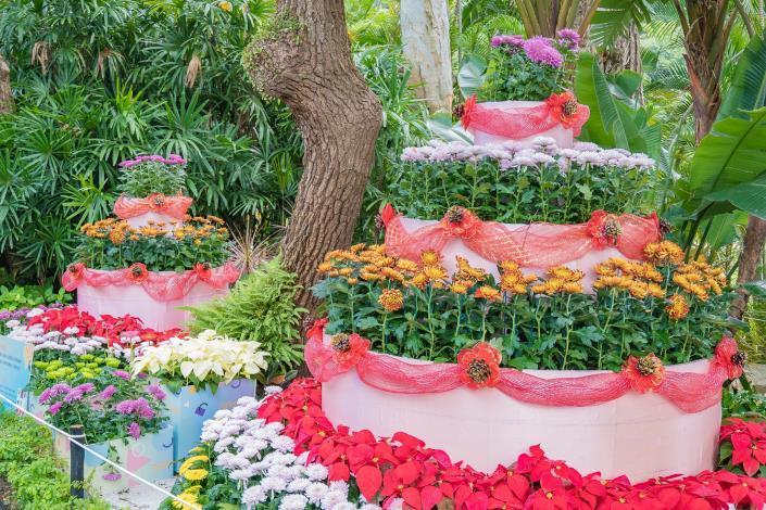 圖4.福埠實業有限公司利用菊花及非洲菊呈現的生日蛋糕